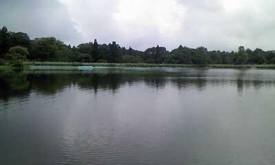 巣鷹湖全景01