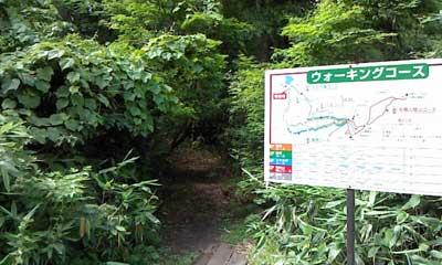スタカ湖コース続き